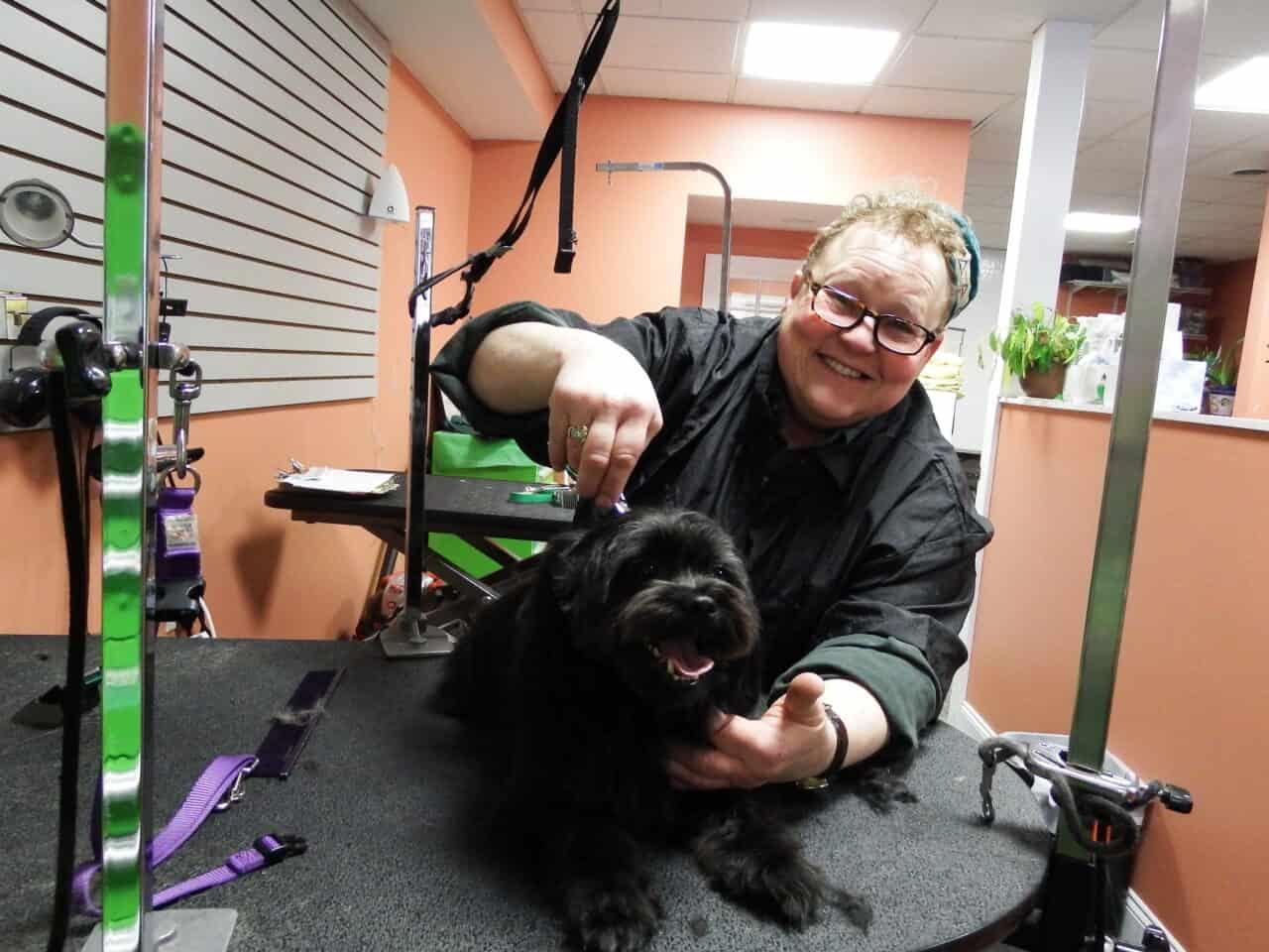 Sundance Lev at Grrreendog Grooming